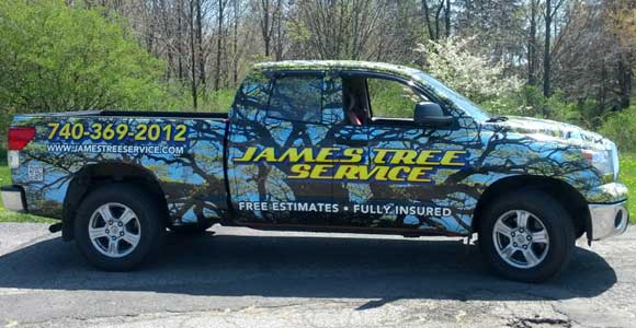 james tree