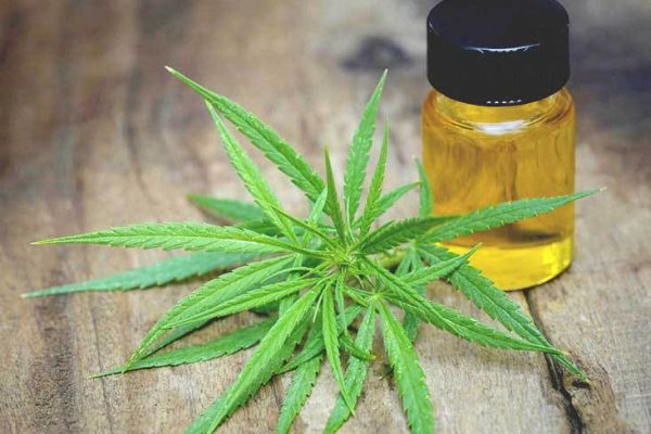 CBD oil, CBD oils